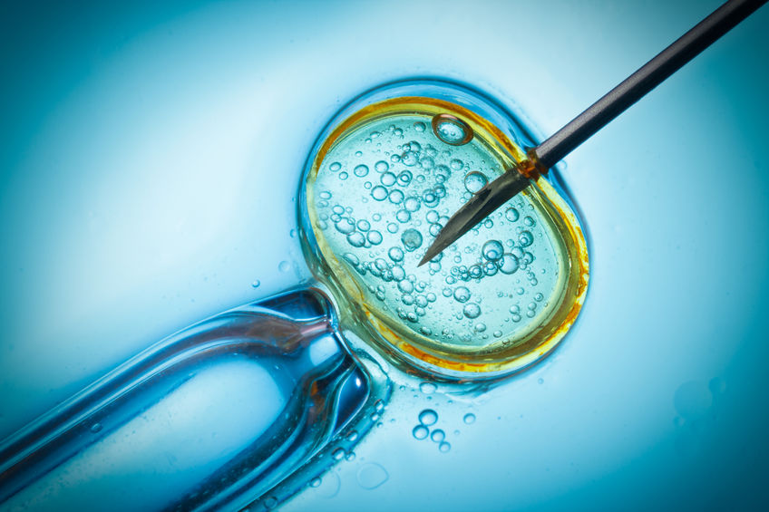 Preferred outcomes of in vitro Fertilization